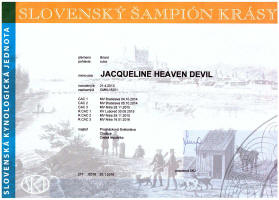 Jacqueline-slovensky-sampion small
