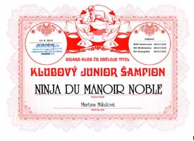 Ninja-Klubový-junior small