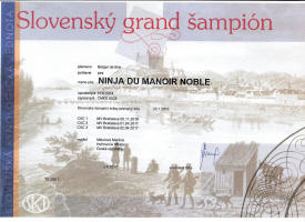 Ninja slovensky grand sampi small1