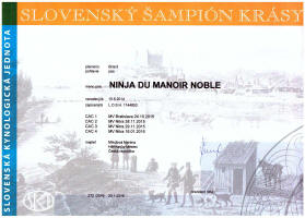 Ninja-slovensky-sampion small