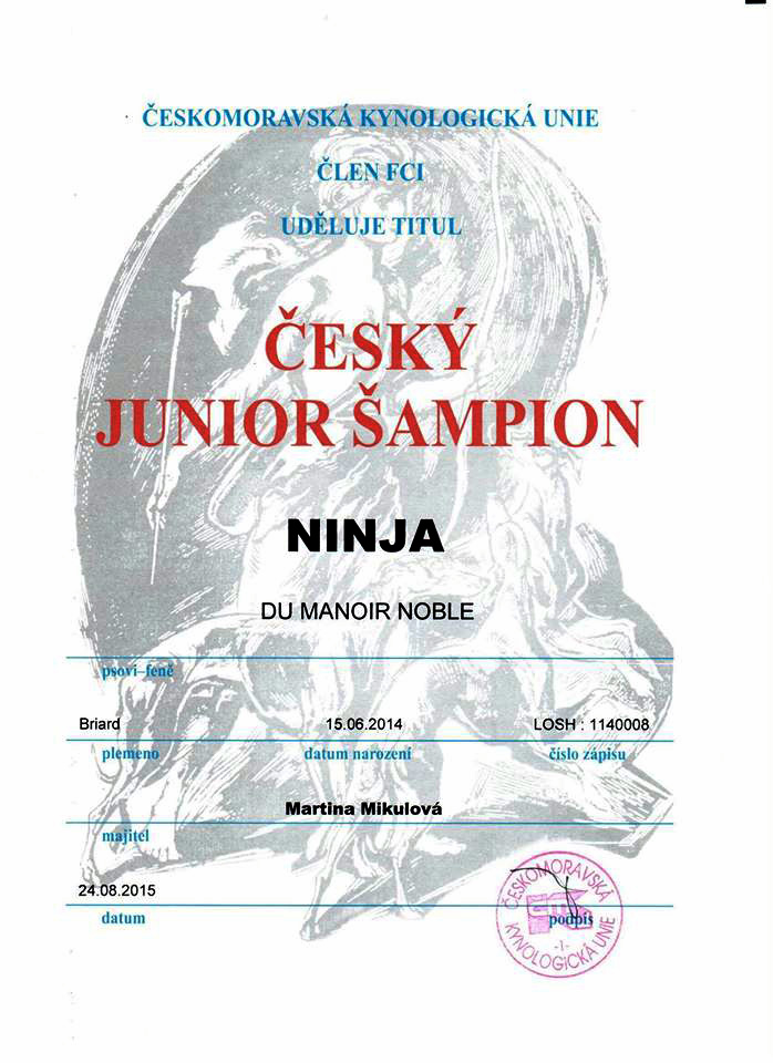 ninja-cesky-junior-sampion